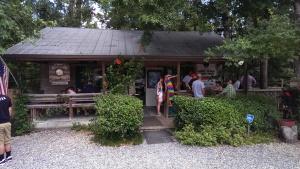 Tour Louisiana - Honey Island Swamp Tour